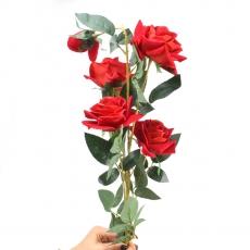 Rosa de terciopelo gigante con tallo largo rojo