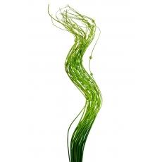 Palitos de perlas verdes