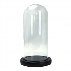 Bol de vidrio Soporte madera tipo domo 20x9