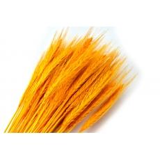 Especia amarilla