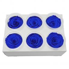 Conjunto de 6 rosas criogénicas - Azul C21-97