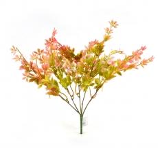 Ramo Rubus verde rojo